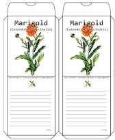 Template for Free Printable Marigold Seed Packet